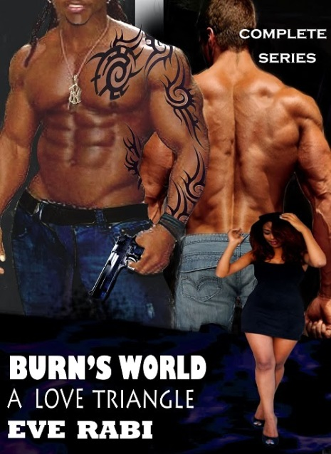 cover+Burn+complete+series+15+Oct+13.jpg